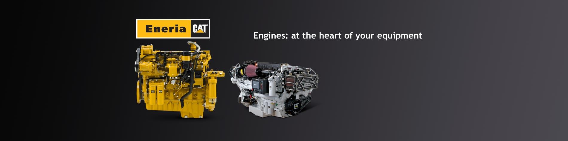 We conduct studies on the best ways to install and adapt Caterpillar engines designed for a wide range of applications in industry, rail transportation, agriculture, oil & gas exploration and development and marine engines.
