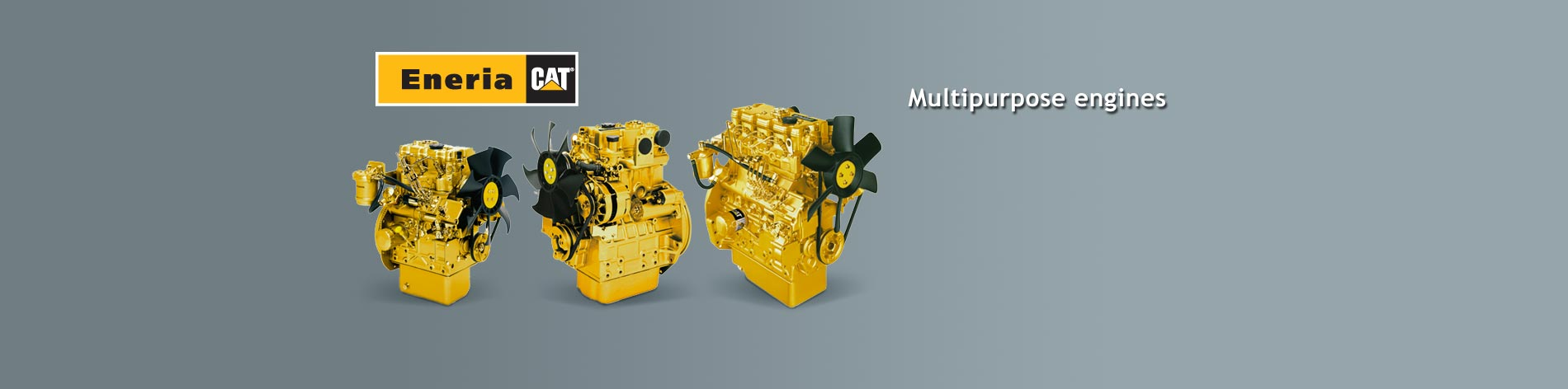 We offer you the complete line of Caterpillar diesel engines in many different versions.