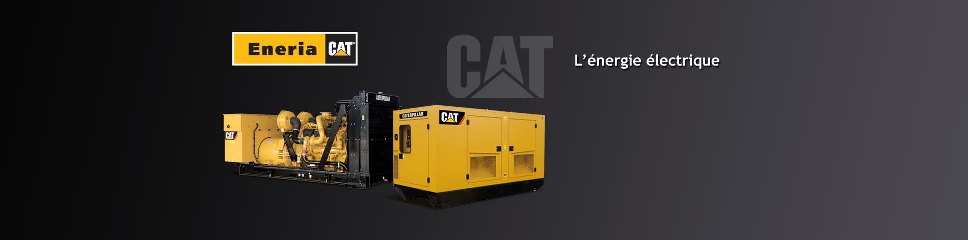 Fixes ou mobiles, de 10 à 14 000 kW, nous distribuons et installons les groupes électrogènes Caterpillar dans toutes les configurations, en conteneur, en bâtiment, dans tous les environnements et pour tous les climats du monde.